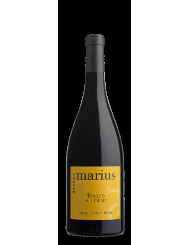 Avenue Marius 2019
